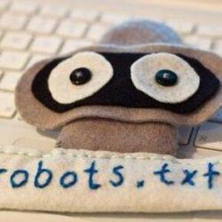 看完秒懂robots.txt写法和注意事项